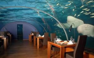 Restaurantes originales maldivas blog del single