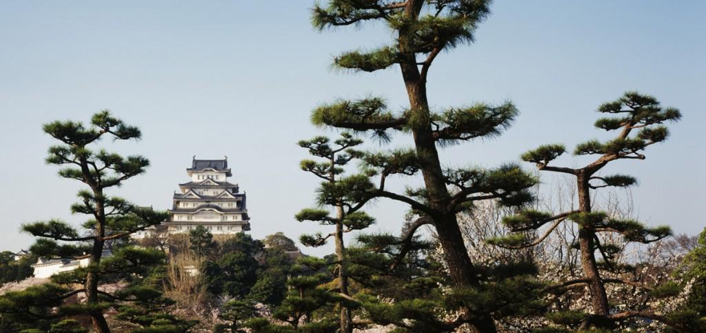 Castillos del mundo Himeji